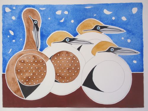 Gannets as circular birds