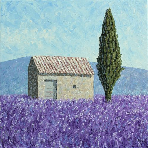 Lavender field and barn in Provence